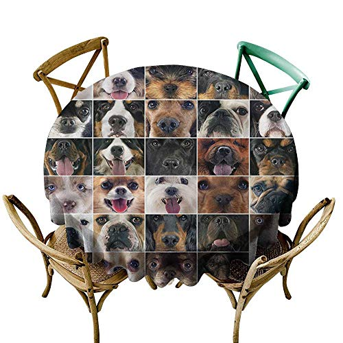 Spaniel Umbrella - Luunins Round Tablecloth spillproof Dog Lover,Chow Chow Cocker Spaniel D50,for Umbrella Table