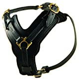 Dean & Tyler Leather Dog Harness - ''The Victory'' - Medium Girth: 23'' - 34'' Neck: 12'' - 23''- BLACK - Handmade From Leather - With Belt Style Buckles - For Medium Dogs