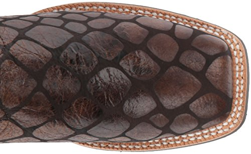 Anaconda Women's Boot Ariat Chocolate Work Callahan Print 4vnqf