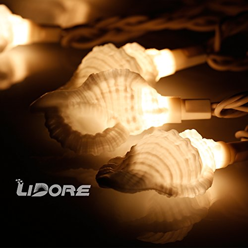 LIDORE Set of 10 Seashell Beach Style String Lights Set. For Party, Patio, Home decoration. - Renaissance Corner Table