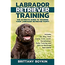 Labrador Retriever Training: The Ultimate Guide to Training Your Labrador Retriever Puppy: Includes Sit, Stay, Heel, Come, Crate, Leash, Socialization, ... to Eliminate Bad Habits (English Edition)