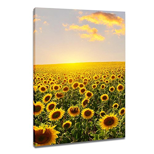 DVQ ART Sunflower with Sunset Wall Art Painting Beautiful Landscape Print on Canvas Framed Print Poster for Living Room Bedroom Decor 1 Pcs