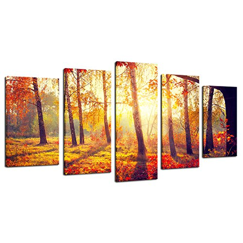 Orange Canvas Wall Art: Amazon.com