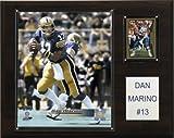 NCAA Football Dan Marino Pittsburgh Panthers Player Plaque