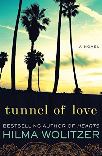 Tunnel of Love: A Novel