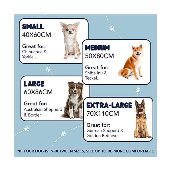 51QYgzaoe2L ZENAPOKI Dog Bed - M - Orthopädisches Kissen für Hunde, gut die Gelenke - Hundebett flauschig aus Memory Schaum, Dog Bed…