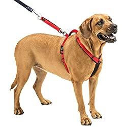 SPORN Ultimate Control Dog Harness, Red, Large