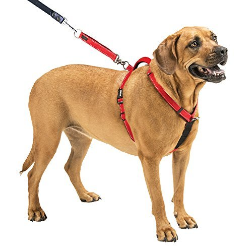 ol Dog Harness, Red, Large ()