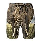 HFSST Africa Elephant Big Elephant Summer Swimming Trunks Beachwear Shorts