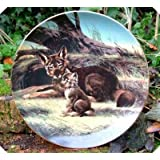 Last Of Their Kind The Red Wolf Will Nelson Plate by Bradex