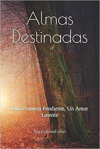 Almas Destinadas: Una Promesa Pendiente, Un Amor Latente ...