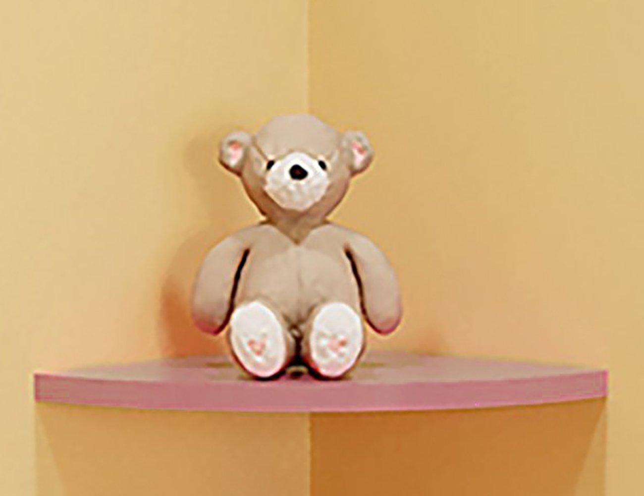 THEE Floating Corner Shelf Decorative Wall Storage Shelves for Bedroom Living Room