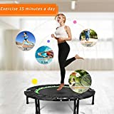 Elever 40 Inch Mini Foldable Exercise Trampoline for Kids Adult, Green Fitness Rebounder Trampoline with Bar for Indoor Garden Workout Cardio Training, Max Load 300lbs