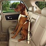Guardian Gear Ride Right Classic Car Harnesses — Sturdy Nylon Harnesses for Dogs - Small/Medium, Khaki