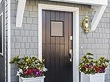 Design House 501692 Augusta 1 Light