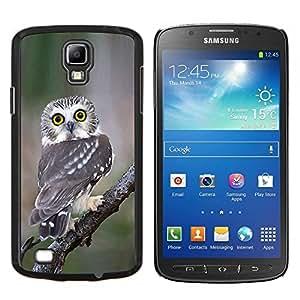 Dragon Case - FOR S4 Active I9295 (Do Not Fit S4) - owl surprised feathers nature wings - Caja protectora de pl??stico duro de la cubierta Dise?¡Ào Slim Fit