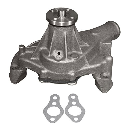 ACDelco 252-726 Professional Water Pump Kit