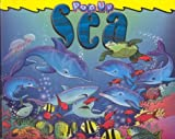 img - for Pop Up Sea book / textbook / text book