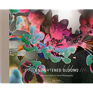 Enlightened Blooms: Solarized Diptych Floral Photographs