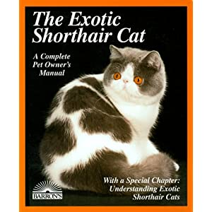 The Exotic Shorthair Cat: Everything About Acquisition, Care, Nutrition, Behavior, Health Care, and Breeding (More Complete Pet Owner's Manuals) 14