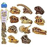 Safari Ltd Dinosaur Skulls TOOB, 11 pieces