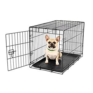 Carlson Pet Products Secure and Foldable Single Door Metal Dog Crate 37