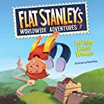 The Flying Chinese Wonders: Flat Stanley's Worldwide Adventures #7 | Jeff Brown