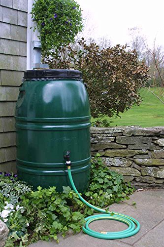 Painted Rain Barrel - Forest Green ()