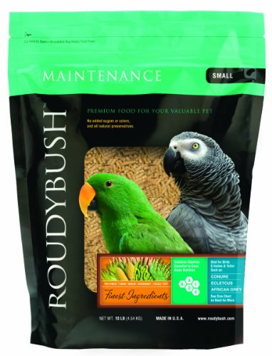 Roudybush Daily Maintenance Bird Food, Small, 10-Pound, My Pet Supplies