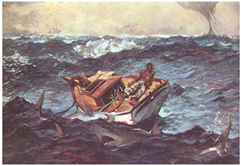 Winslow Homer (Gulf Stream) Art Poster Print 19 x (Winslow Homer Shark)