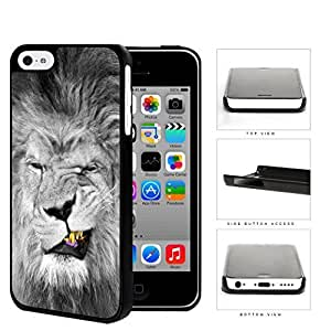 Lion With Gold Teeth Smirking Hard Plastic Snap On Cell Phone Case Apple iPhone 5c