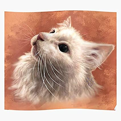 Coolboy Thurston Waffles Cats Animal Fun Meme Cat Portraits Lol Impressive Posters For Room Decoration Printed With The Latest Modern Technology On Semi Glossy Paper Background Amazon Co Uk Kitchen Home Food daft punk thurston cat thurston the cat cats. amazon co uk
