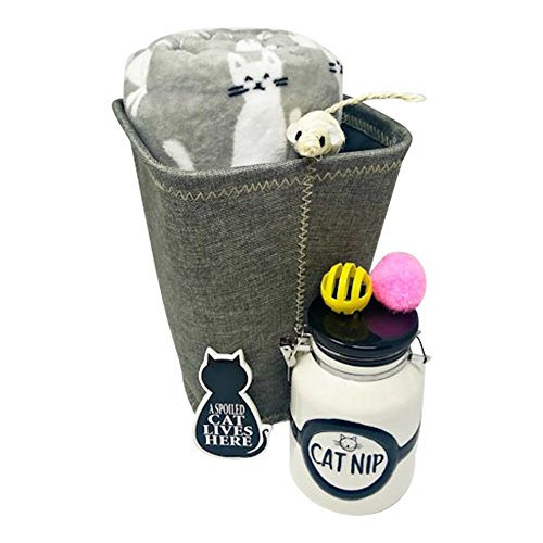 Cozy Gift Basket For Cat Lovers With Blanket Toys Treat Jar