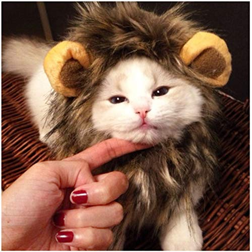 Meihejia Funny Lion Mane Costume for Cat & Small Dog - Fit Neck Girth Up to 7.5 Inches -