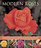 img - for Modern Roses: An Illustrated Guide to Varieties, Cultivation and Care, with Step-by-Step Instructions and Over 150 Beautiful Photographs book / textbook / text book