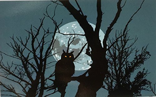 Halloween Velvet Plush Throw/Wall Hanging 50'' X 60'' (Black Owl on Blue)