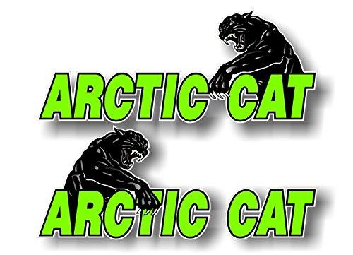 2 Arctic CAT Swiping 9