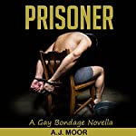 Prisoner: A Gay Bondage Novella | A.J. Moor