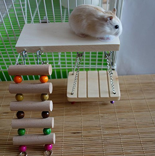 Be Good Hamster Hamsters Chinchillas