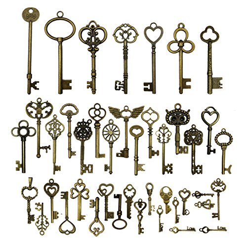 42pcs Mixed Vintage Skeleton Keys, Salome Idea 42 Styles Key for Alice in Wonderland Party, Each 1piece (Brone) -