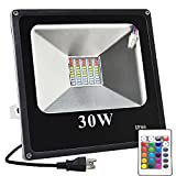 GLW 30W LED RGB Flood Light, Color Change Light with Remote Control, IP66 Waterproof Outdoor Light, 16 Colors and 4 Modes SMD Lamp Light for garden, adverting, landscape, party