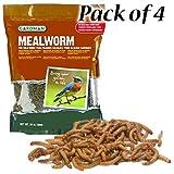 BestNest Gardman Dried Mealworms, 112 ounces