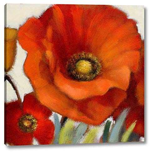 Poppy Splendor Square 1(Closeup) by Lanie Loreth - 19