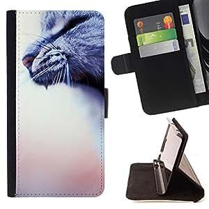 Jordan Colourful Shop - Yawn Roar Cat Grey House Blurry Peach For Apple Iphone 5C - Leather Case Absorci???¡¯???€????€????????&