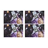 Artsadd Placemats for Dining Table Animal Marmots in Space Galaxy Solar System Kitchen Table Mat Placemat 12'' x 18'' Set of 4