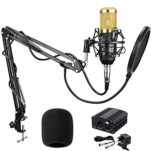 BestCare BM-800 Professional Studio Recording Condenser Microphone With Adjustable Mic Suspension Scissor Arm Stand and Shock Mount, Double-Layer Pop Filter with 48V Phantom Power Supply (Black)