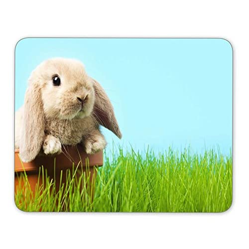 Top Baby Easter bunny on spring green grass Mouse Pad Office Mouse Pad Gaming Mouse Pad Mouse Mat MousePad Non-slip rubber backing free shipping