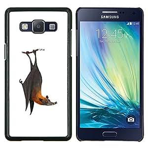 TECHCASE---Cubierta de la caja de protección para la piel dura ** Samsung Galaxy A5 ( A5000 ) 2014 Version ** --Bat lindo blanco frío gris Animal