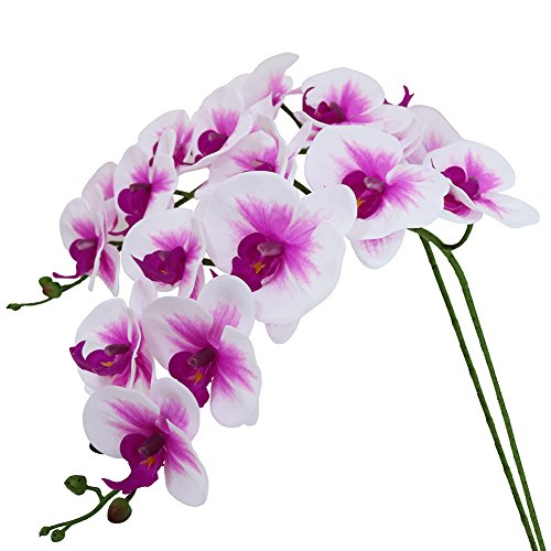 Htmeing 38 Inch Artificial Phalaenopsis Flowers Branches Real Touch (Not Silk) Orchids Flowers for Home Office Wedding Decoration,Pack of 2 (White Pink) ()