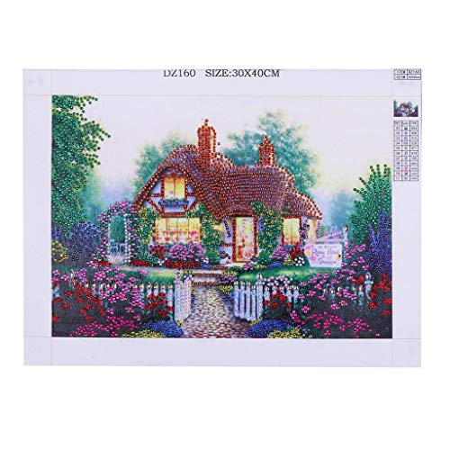 OrchidAmor Special Shaped Diamond Painting DIY 5D Partial Drill Cross Stitch Kits Crystal R ()